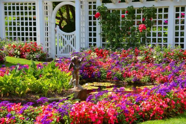 Garden-pond-summer-flowers-garden-fence-wood-white-angel-statue